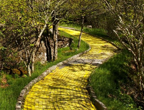 Follow the yellow brick road.