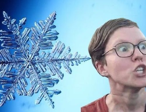 The Rise Of The Snowflake Generation